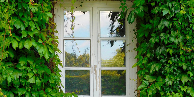 Quelle est la taille standard des fenêtres d'une maison ?