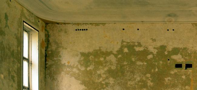 Comment traiter les murs intérieurs humides