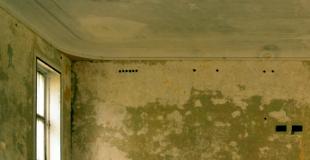 Comment traiter les murs intérieurs humides : conseils, solutions, prix